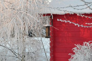 ogród zimowy drewniany